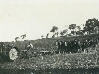 Moline Tractor